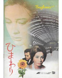 Sunflower (1970) original Japanese movie program ***LAST ONE***