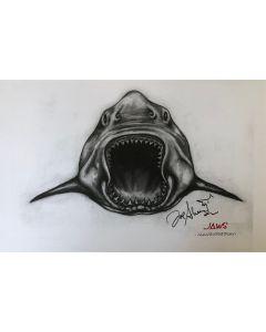 Joe Alves Jaws Original Conceptual Artwork 11X14 #10