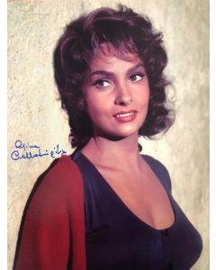 Gina Lollobrigida 11X14 #2