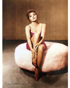 Gina Lollobrigida 11X14 #5