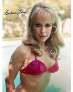 Barbara Eden I Dream of Jeannie 11X14 **ONLY ONE**