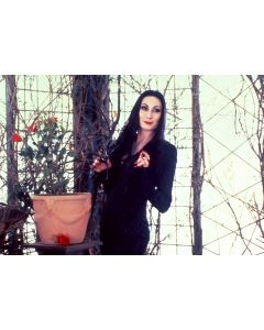 """Private Signing """"Anjelica Huston The Addams Family 7"""""""